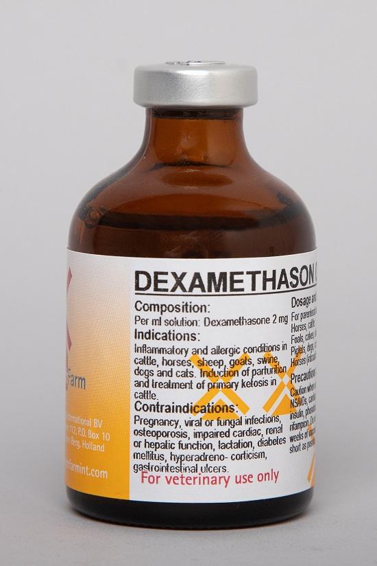 Dexamethason 0.2% Inj